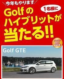 golf_gte2020331.jpg